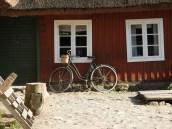 swedes9