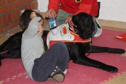 Otro de los tratamientos es la terapia con perros. La lleva a cabo Bocalan Biak Bat. Utilizan estos animales y los pictogramas para mejorar el desarrollo de los niños. PAULA PARCHA
