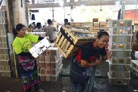 Buruh Gendong Menanti Asa