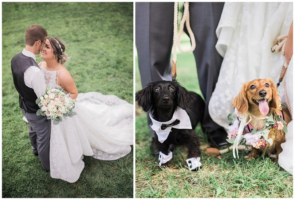 Malorie and Shane outdoor wedding in Sioux Falls, SD. Photo of puppies during wedding.