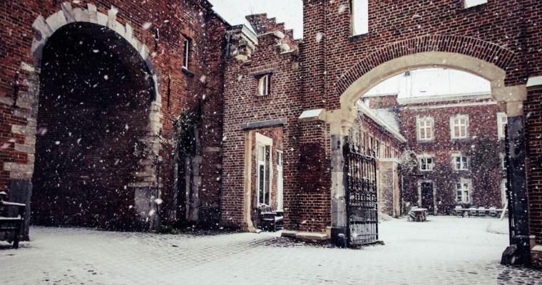 Winterkoning, kom je terug in Nieuwenhoven?