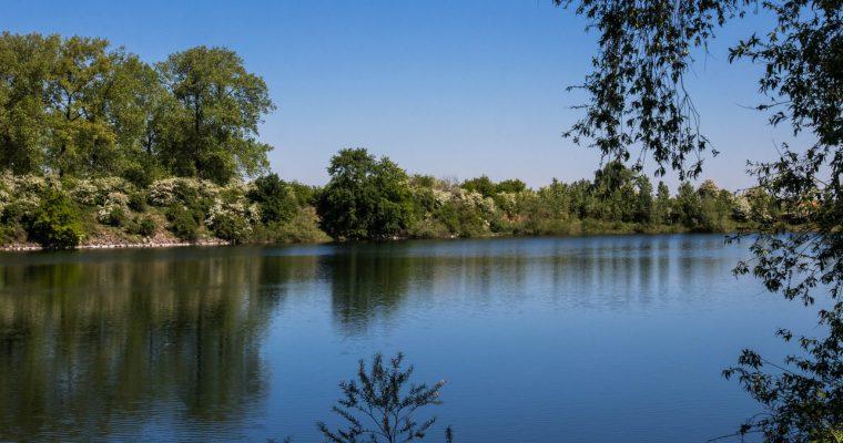 Blogwandeling met Verwonderhoekje in Dilsen-Stokkem, De Maasvallei