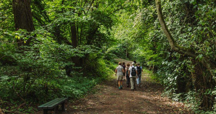 Blogwandeling Alden-Biesen: een feestje in de bossen en het landschap van Bilzen