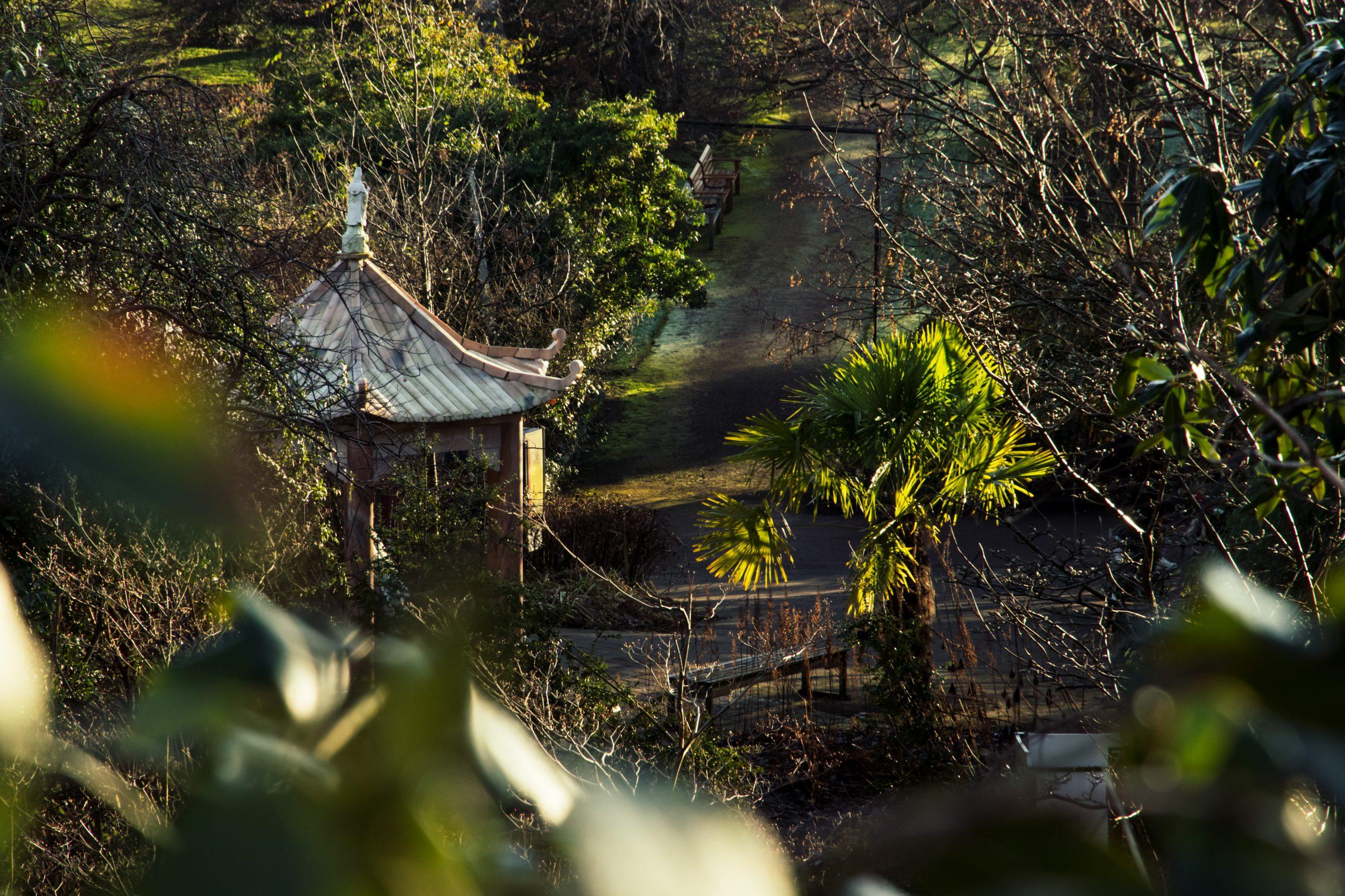 The Royal Botanic Garden in Edinburgh: jungle fever & eekhoornpret
