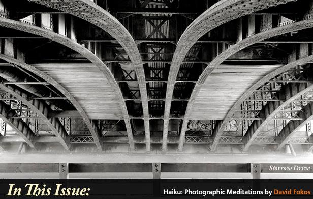 Haiku: Photographic Meditations David Fokos