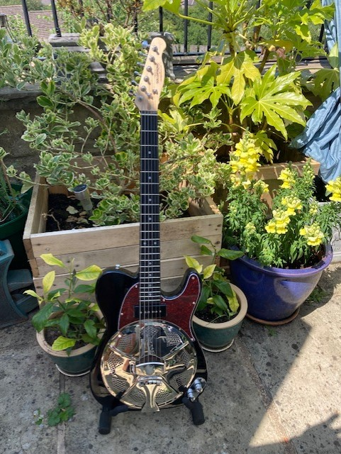 Black And Red, Roseacer Board Neck, P90 Soapbar Pickup