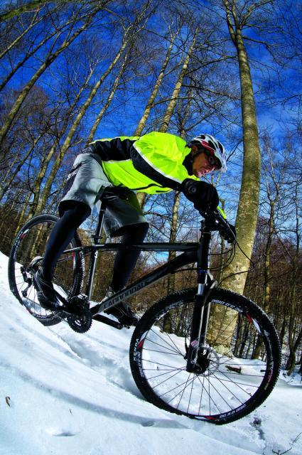 Comparativo 29er de primer precio. Cannondale Trail SL 29er 2