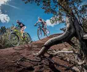 comparativo bicis MTB XC rígidas de 12 velocidades