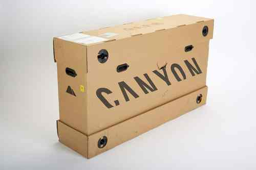 Canyon Neuron:ON