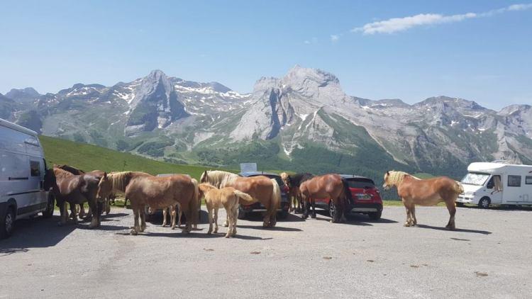 Ruta-bici-Pirineos-asequible_10