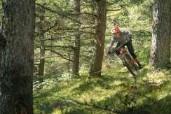 Orbea Wild FS Carbon_056