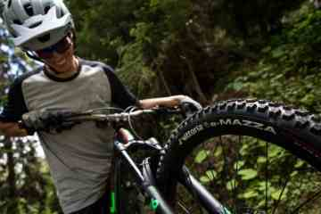 vittoria neumáticos e-bike