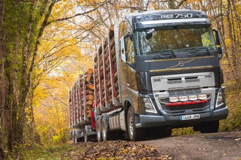 Volvo FH16 transporte madera