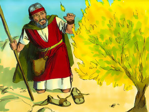 004-moses-burning-bush.jpg
