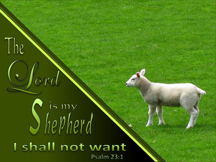 Psalm 23 The Lord Is My Shepherd sage.jpg