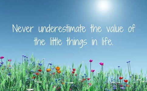 Happiness… is defined by little things in life!