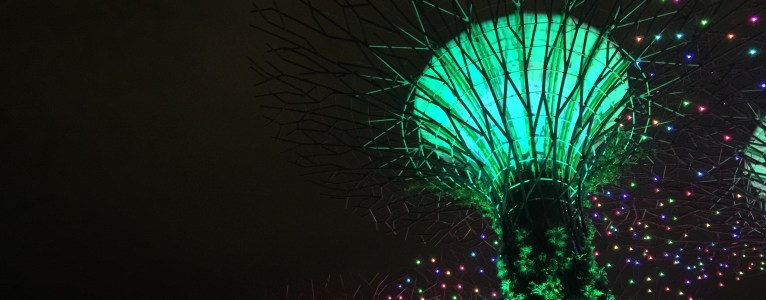 Gardens by the bay: Supertree Grove