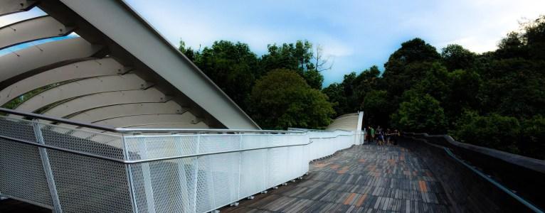 Visit Henderson Waves Bridge
