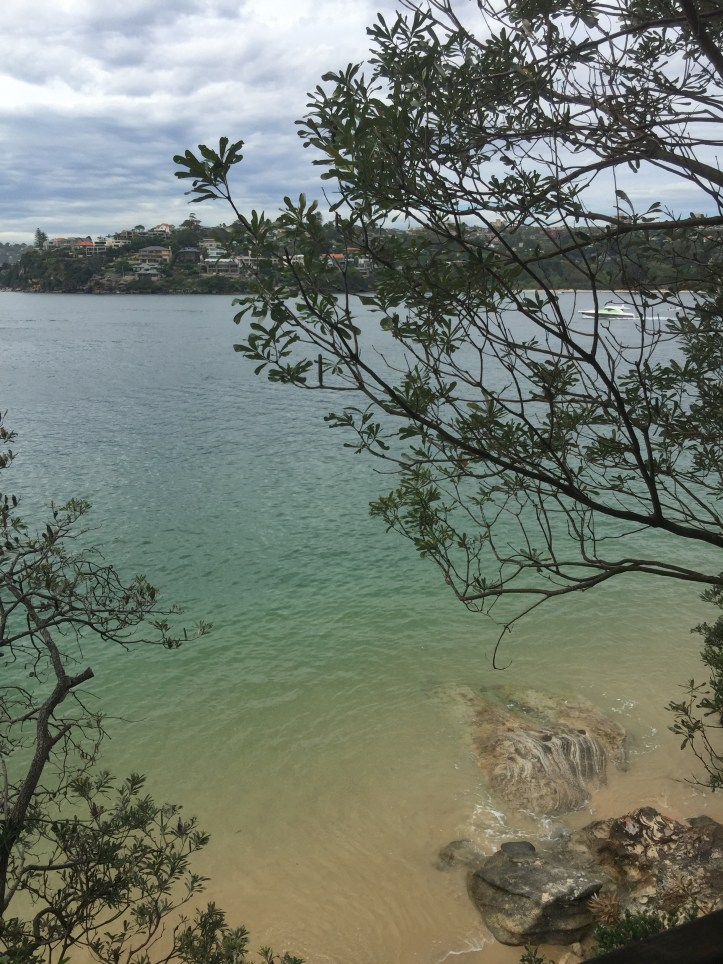 Spit bridge to Manly coastal walk (Sydney)