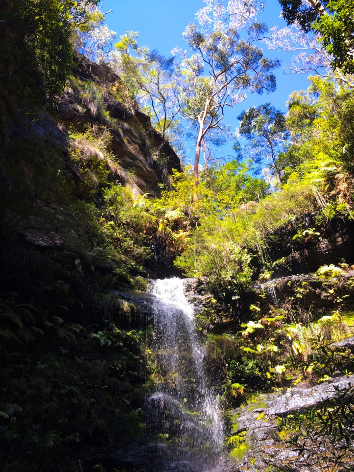 Dantes Glen loop walk (Blue Mountains)