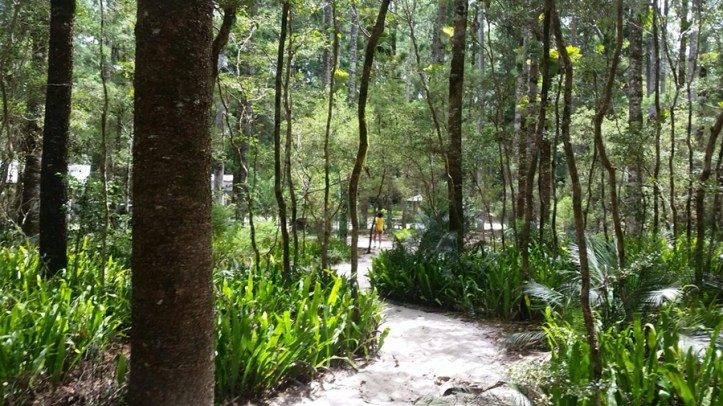 Fraser Island - A complete guide!