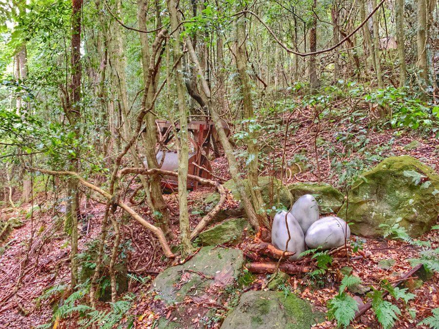 Visit Dinosaur Valley in Scenic World