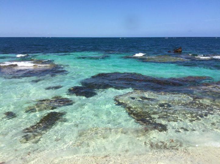 Rottnest Island | Western Australia