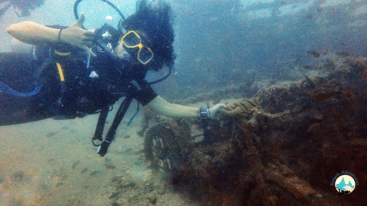 Divers at Temple Reef | Pondicherry
