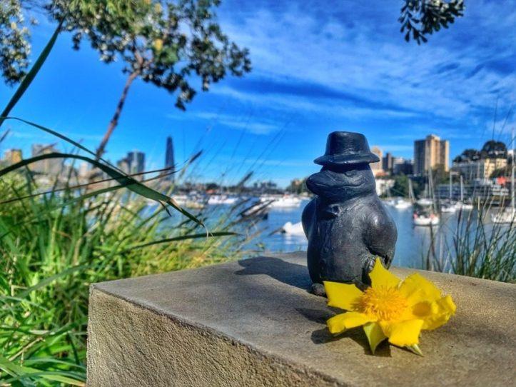 Mr Kookaburra The Comic Walk in Sydney