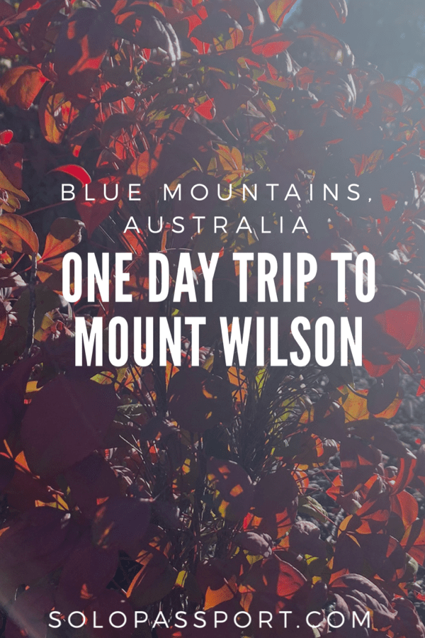 One day trip to Mount Wilson