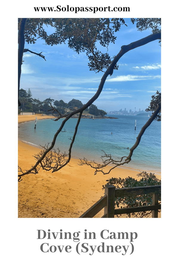 PIN for later reference - Diving at Camp Cove Beach, Sydney