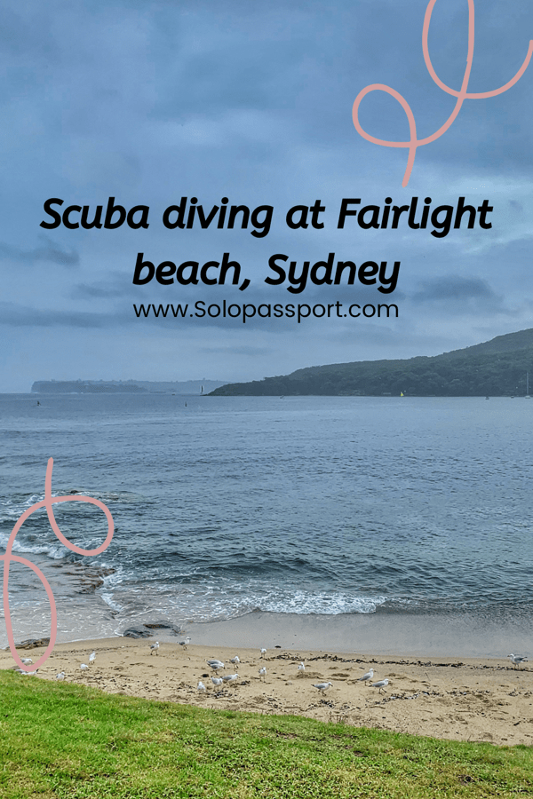 PIN for later reference - Diving at Fairlight beach
