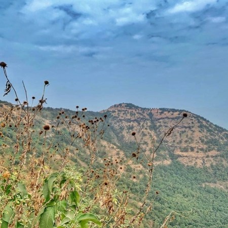 Hike to Sinhagad Fort