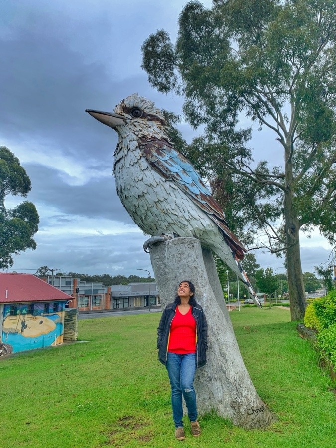 Big Kookaburra