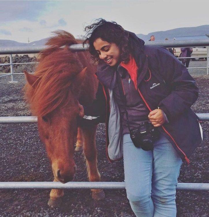 Fakasel, Icelandic horse farm Iceland