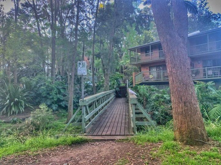Lane Cove Tree Trails