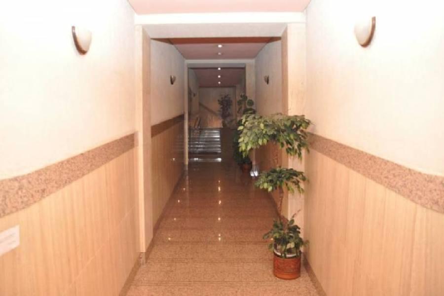 Torrevieja,Alicante,España,4 Bedrooms Bedrooms,2 BathroomsBathrooms,Pisos,12348