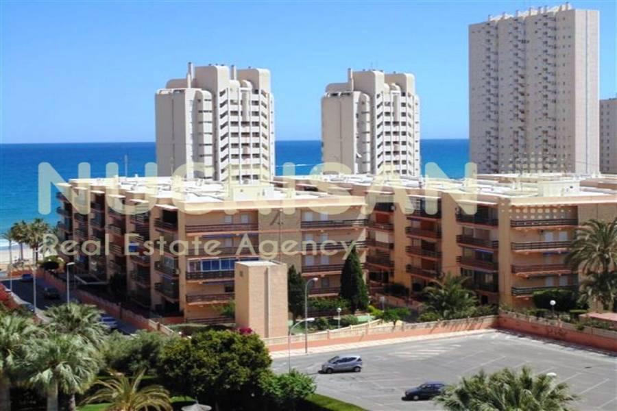 el Campello,Alicante,España,2 Bedrooms Bedrooms,2 BathroomsBathrooms,Apartamentos,21618