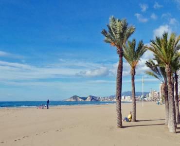 Benidorm,Alicante,España,2 Bedrooms Bedrooms,1 BañoBathrooms,Apartamentos,24311