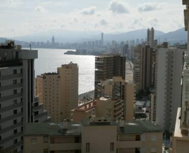 Benidorm,Alicante,España,1 Dormitorio Bedrooms,1 BañoBathrooms,Apartamentos,24354