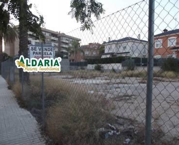 Elche,Alicante,España,Lotes-Terrenos,24373