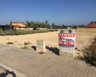 Elche,Alicante,España,Lotes-Terrenos,24777