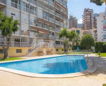 Benidorm,Alicante,España,1 Dormitorio Bedrooms,1 BañoBathrooms,Apartamentos,26683