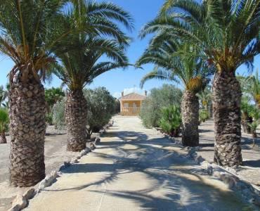 Guardamar del Segura,Alicante,España,1 BañoBathrooms,Casas,26857