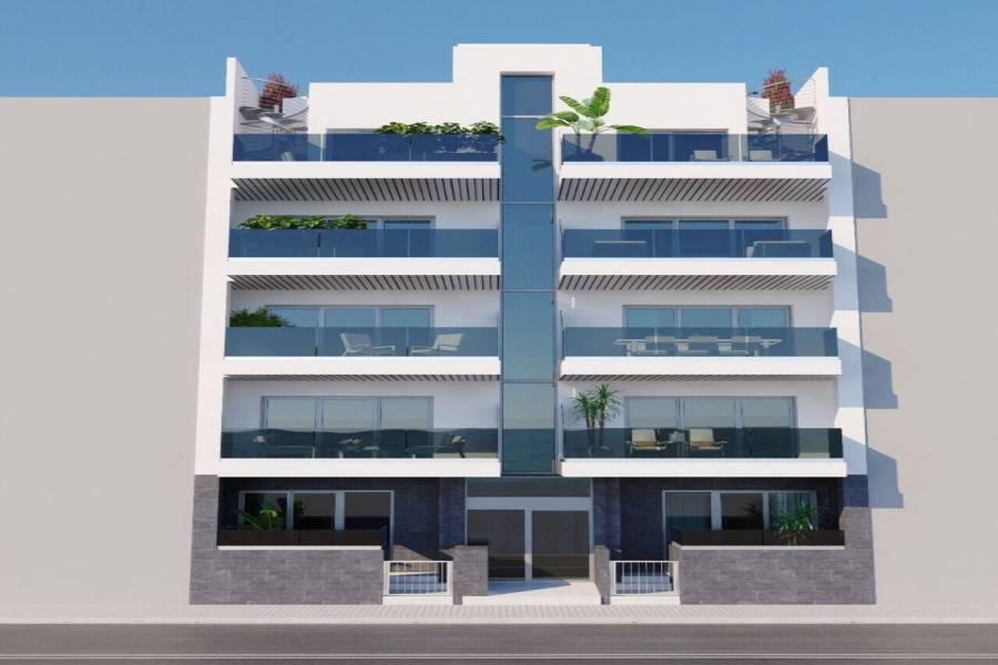 Torrevieja,Alicante,España,3 Bedrooms Bedrooms,2 BathroomsBathrooms,Apartamentos,31979