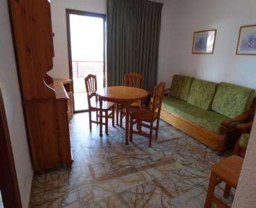 Benidorm,Alicante,España,1 Dormitorio Bedrooms,1 BañoBathrooms,Apartamentos,34543
