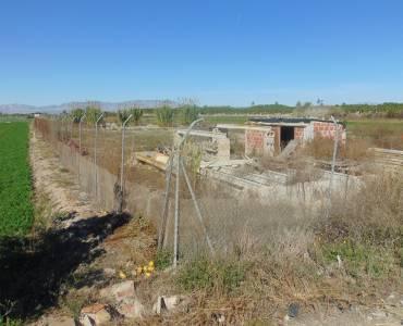 San Fulgencio,Alicante,España,Lotes-Terrenos,39876