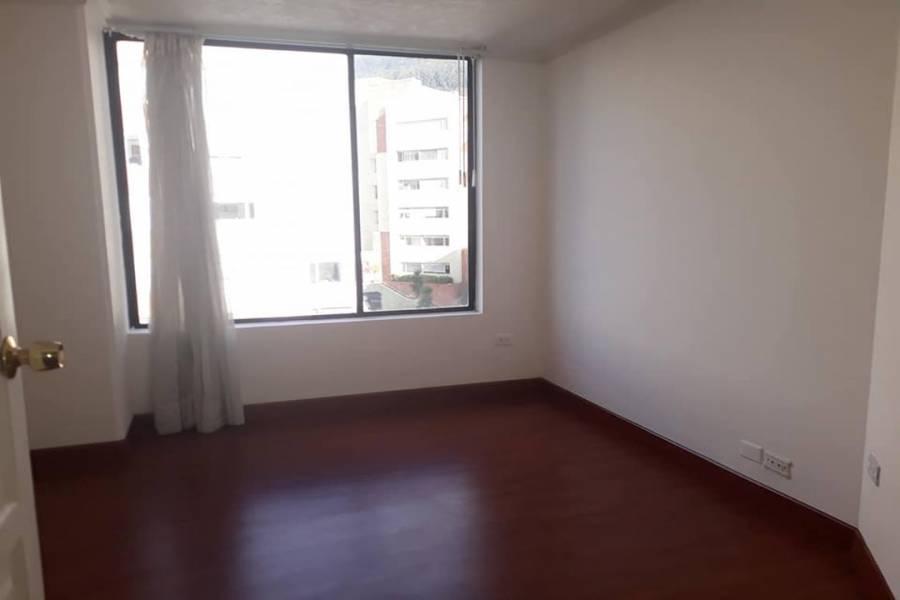 QUITO,PICHINCHA,Ecuador,2 Bedrooms Bedrooms,1 BañoBathrooms,Apartamentos,granda,grabda centeno,3,40616