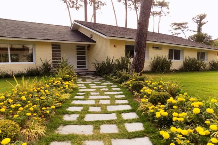 Punta del Este, Maldonado, Uruguay, 4 Bedrooms Bedrooms, ,3 BathroomsBathrooms,Casas,Temporario,41696