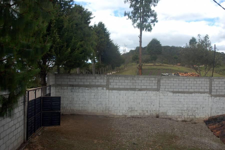 Tarqui, AZUAY, Ecuador, ,Chacras-Quintas,Venta,2,42399